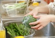 Gıdalarımızın Güvenliğini Kontrol Etmek Elimizde